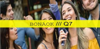 BONAOK Q7 Wireless Karaoke Microphone cover